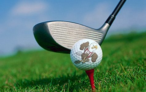 Men's Golf Takes Last in Firestorm Invitational