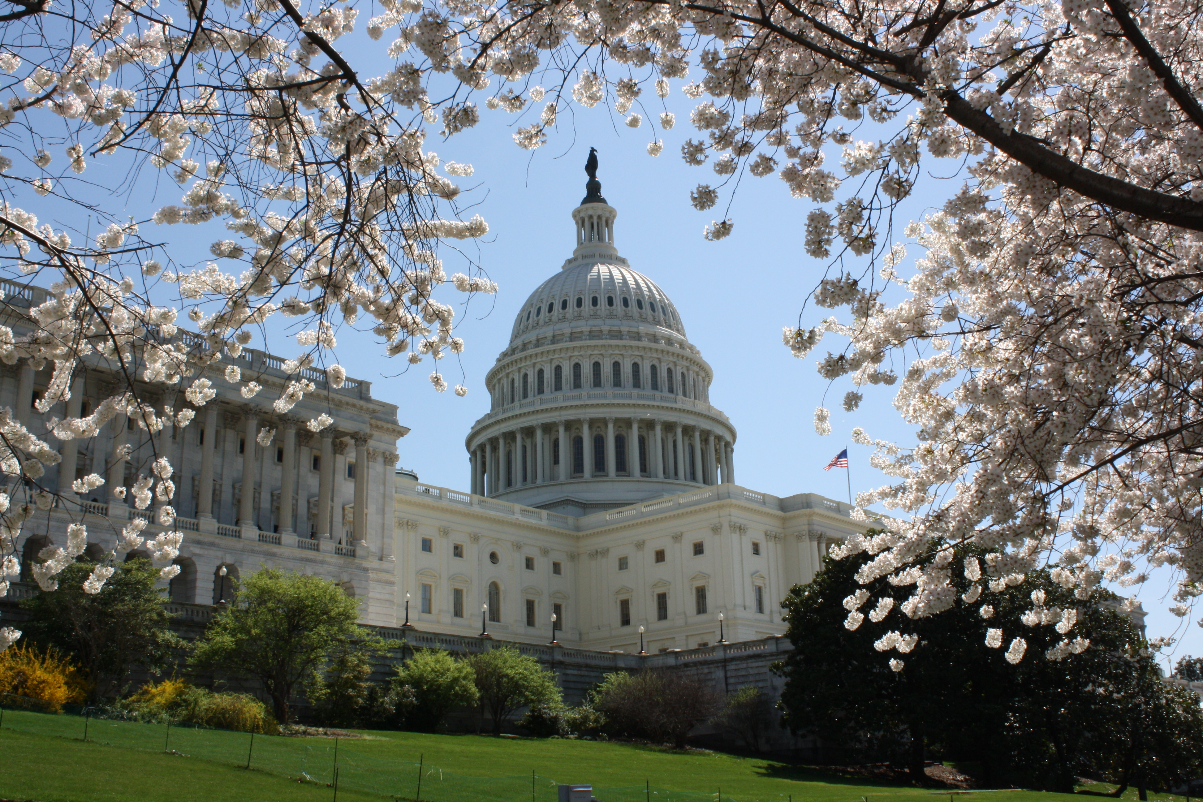 Capitol Hill is one of the places that professors and students want to reach as Biola spreads a Christian worldview into Washington D.C.   Amy Seed/THE CHIMES