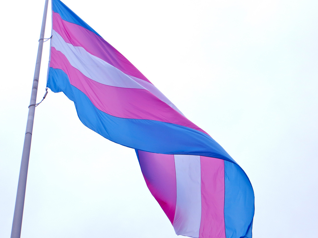 To honor the annual Transgender Day of Remembrance, a transgender flag was raised in Harvey Milk Plaza in November for the first time in its history.   Courtesy of torbakhopper [Creative Commons]