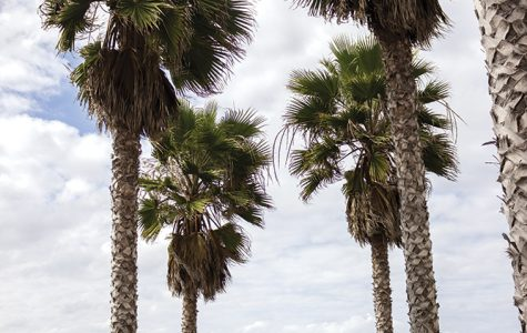 Sights to see in San Diego