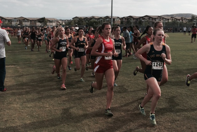 Cross country earns podium finishes