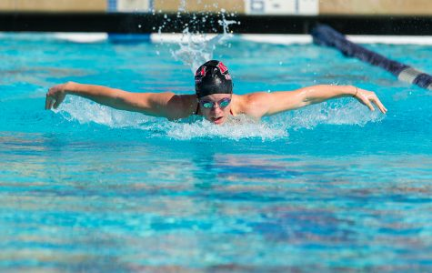 Swim reaches for success
