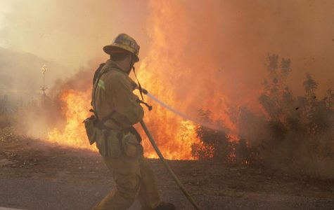 A Los Angeles County firefighter braces against wind and flames as fire leaps across Rambla Pacifico in the Santa Monica Mountains as fire continues to burn in Malibu, Calif., Monday, Oct. 22.