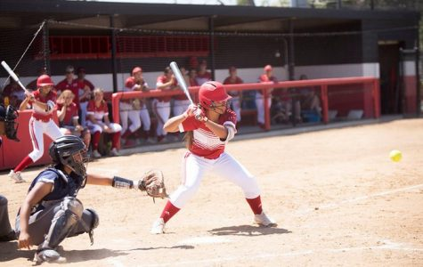 Softball disappoints with two losses