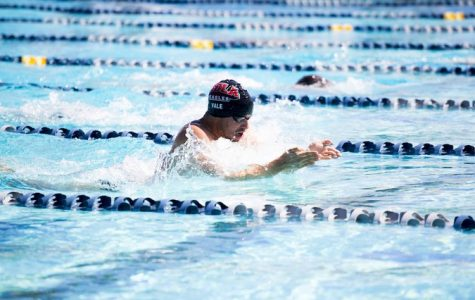 Swim teams dive into winter invite