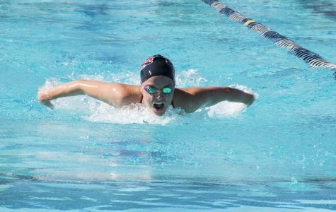 Swim and dive gain strong individual finishes