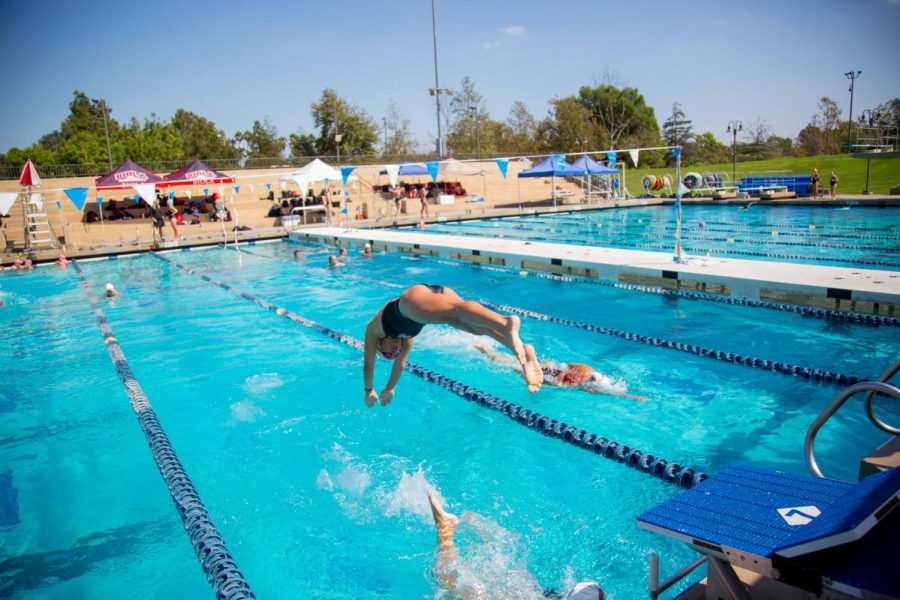 An Eagles swimmer leaps into the pool during the Pacific Coast Swim Conference relays on Oct. 6, 2018.