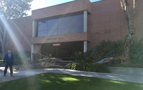 Photo: Metzger Hall blocked off by fallen tree