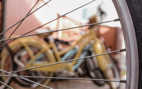 14 bicycles stolen from Biola