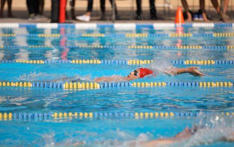 Chang breaks records at swim's winter invite