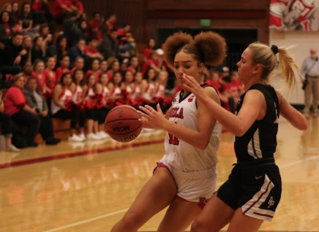 Women's basketball falls against APU