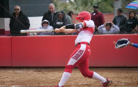 Softball loses doubleheader at Concordia