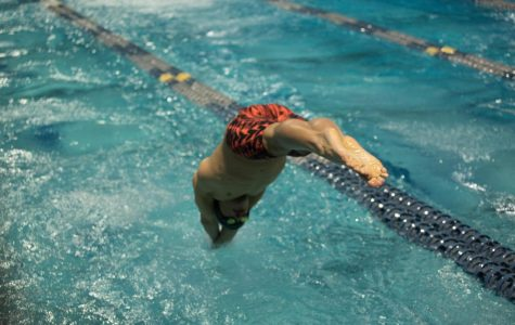 Swim and dive breaks records in championship meet