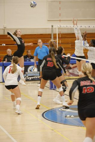 Volleyball tops UCSD and Concord during Alaska invitational