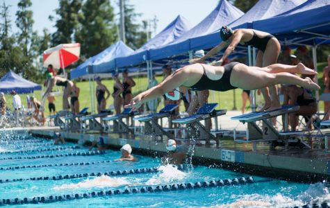 Swim and dive jumps into first meet