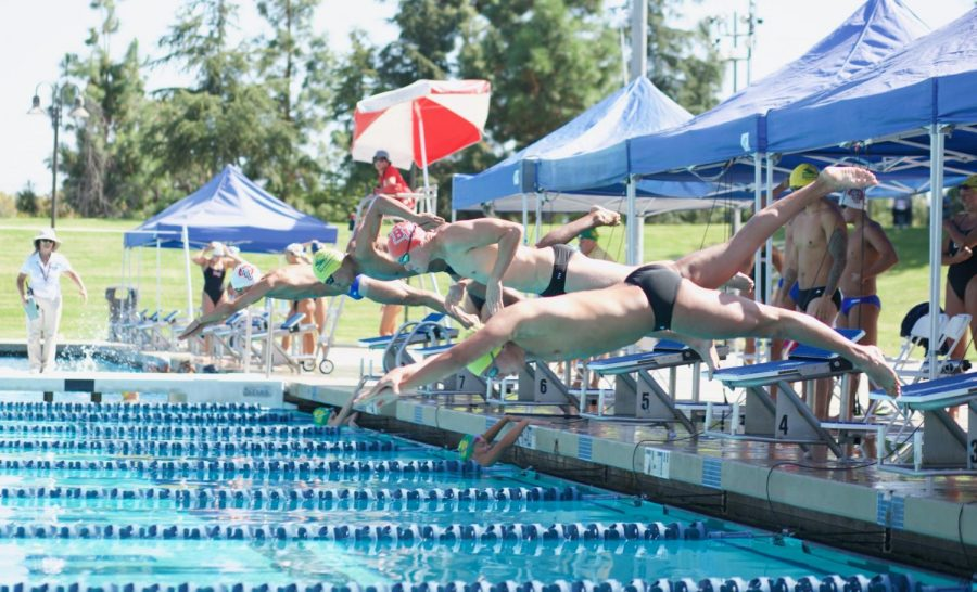 A Biola mens swim team swimmer dives into the pool.