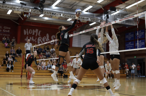 Volleyball loses fight against APU