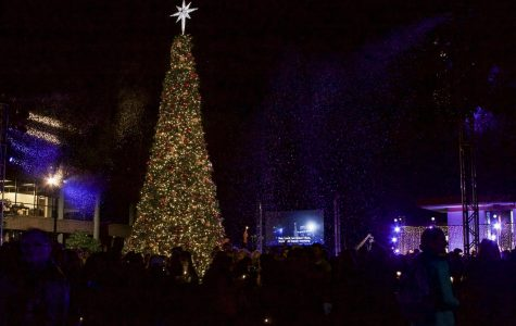 Veterans recognized at Christmas tree lighting