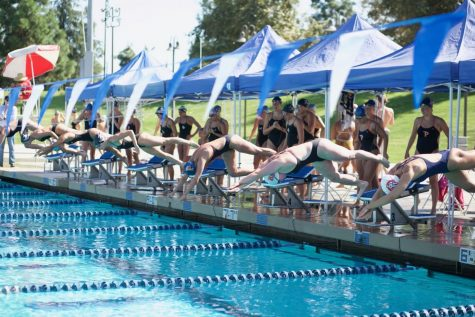 Men's swimming places first in the Bay Area Invite