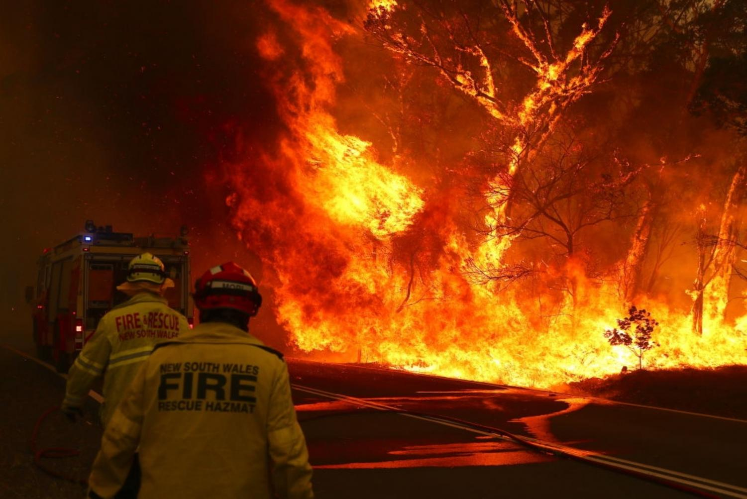 Ramos grew up in New South Wales close to where the fires raged.