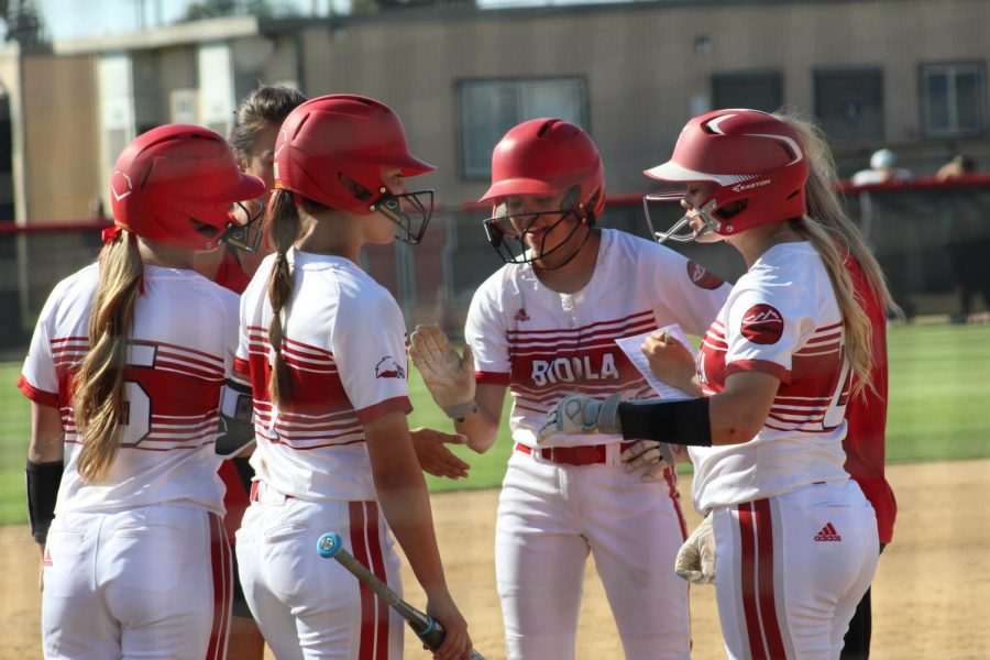 Softball drops both games in double-header