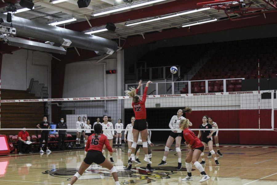 Volleyball takes three-set win against the Urban Knights